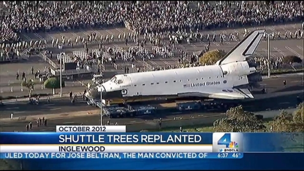 [LA] Replanting Space Shuttle Endeavour Trees