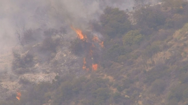 [LA] Mandeville Canyon Brush Fire at 70 Percent Containment