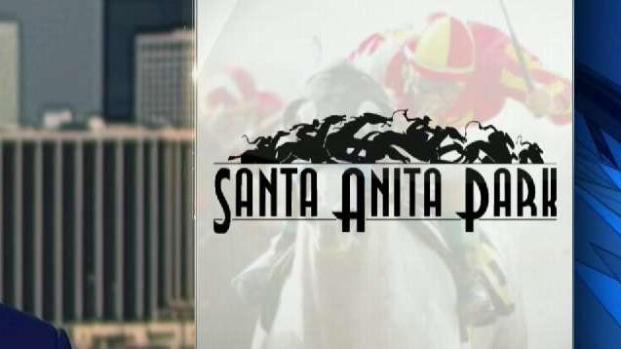 [LA] Another Horse, 32nd Since December, Dies at Santa Anita