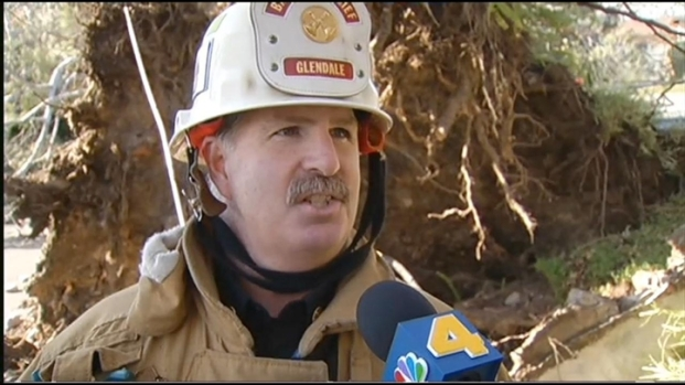 [LA] Winds Uproot Massive Tree in Glendale