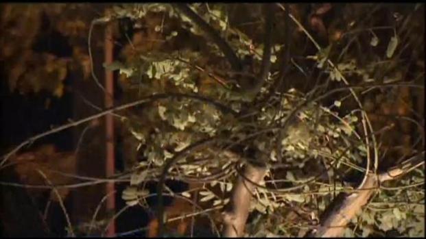[LA] Santa Ana Winds Prompt Fire Warnings