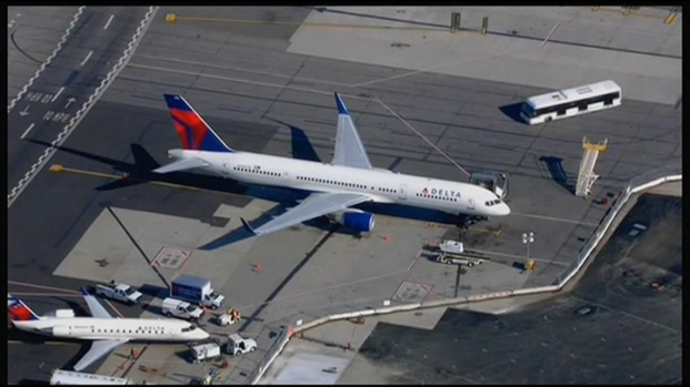 [LA] Bird Strike Aborts Flight Bound for Los Angeles
