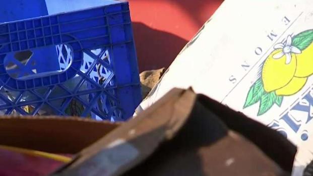 [LA] LA Mayor Vows Illegal Dumping Crackdown