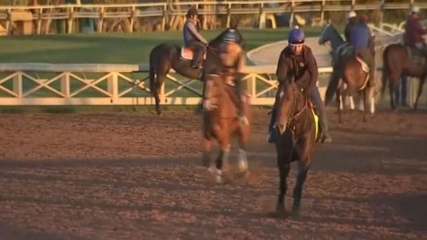 [LA] 30th Horse Dies at Santa Anita, Trainer Banned