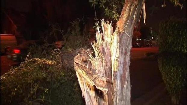 [LA] Wind Storm Rips Through SoCal
