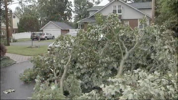 [NY] Possible Tornado Touchdown Probed in NJ