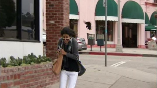 [LA] Angry Birds Dive-Bomb Pedestrians Near Pacific Palisades Yogurt Shop