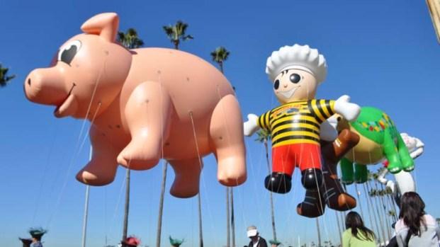 Images: Big Bay Balloon Parade