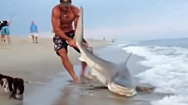 [NATL] WATCH: Man Wrestles Shark With Bare Hands