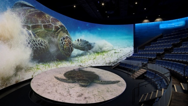 Sea Inside Pacific Visions, the New Aquarium Wing