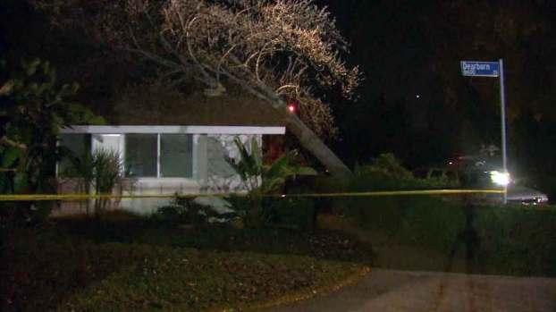 [LA] Noon Update: Tree Falls on House