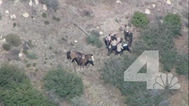 Deputies Face Charges in Horseback Pursuit Takedown