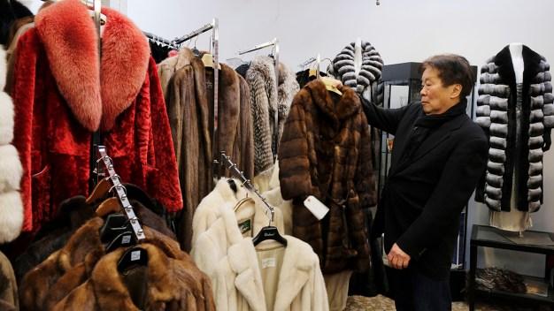 San Francisco Largest US City to Ban Fur Sales