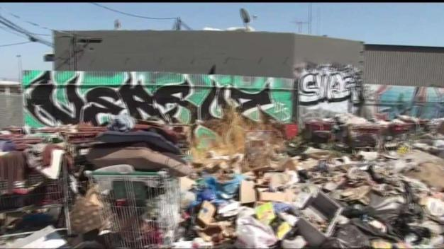 Activist Leads Homeless Encampment Cleanup