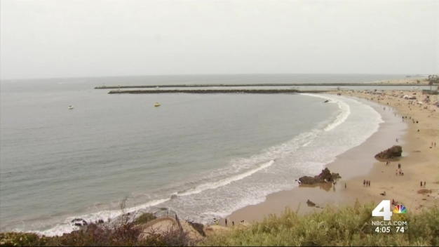 Beach Remains Closed After Woman Falls Victim in Apparent Shark Attack