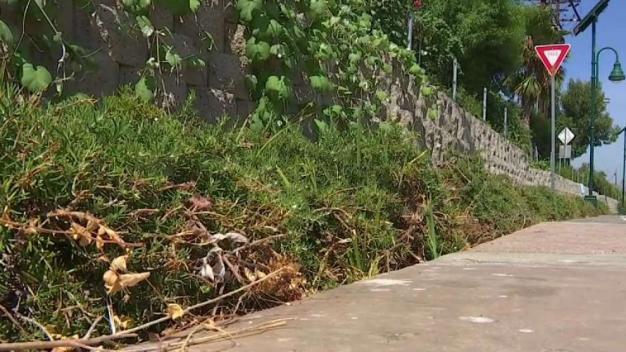 Councilman Vows to Clean Up LA River Path