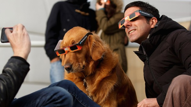 How to Prepare Your Pet for the Solar Eclipse