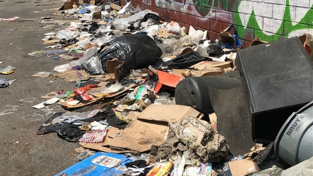 City Council Committee Looking Into Hiring Homeless for City Cleanups