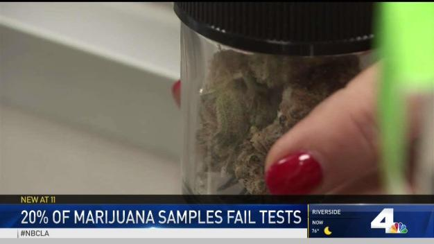 Some Marijuana Samples Fail Tests