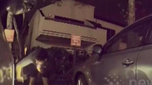 Tesla Camera Captures Tire Slasher in the Act
