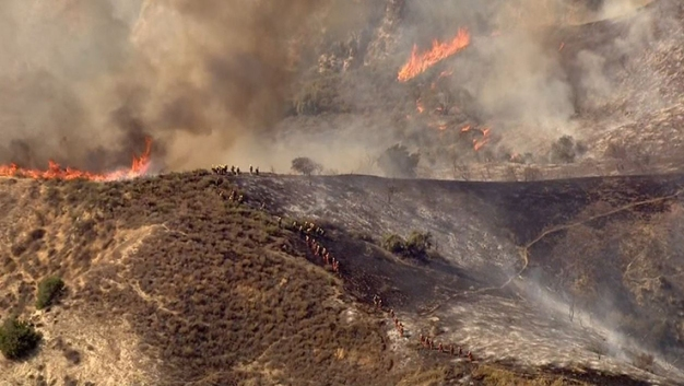 Crews Battle Brush Fire in Lake View Terrace
