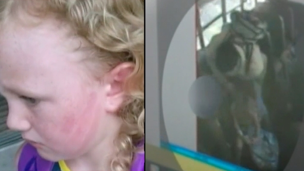 Caught on Camera: Child Slapped on Bus
