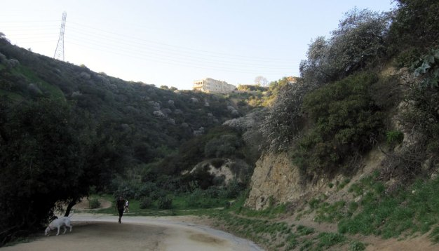 Runyon Canyon Reopens Tuesday