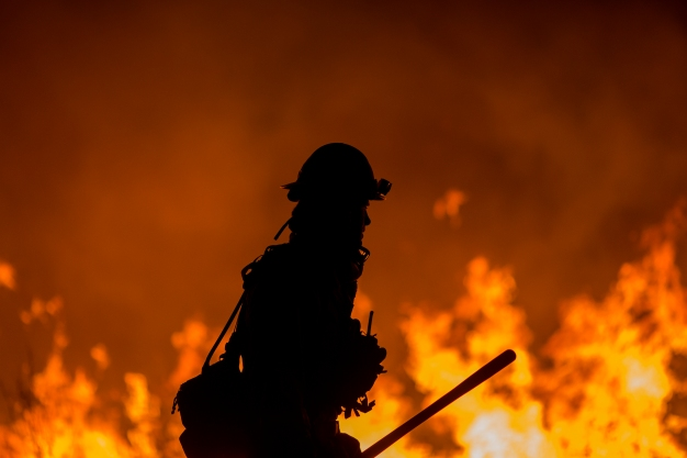 State Fire Chiefs Asking For $100M to Prepare for Wildfires