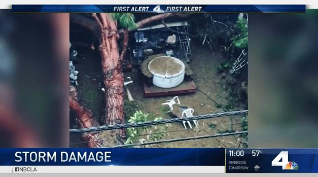[LA] Storm Topples Tree in Long Beach