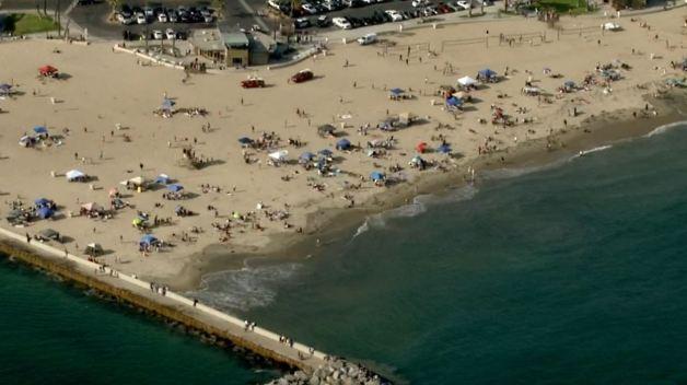 Possible Shark Attack Closes Stretch of Newport Beach