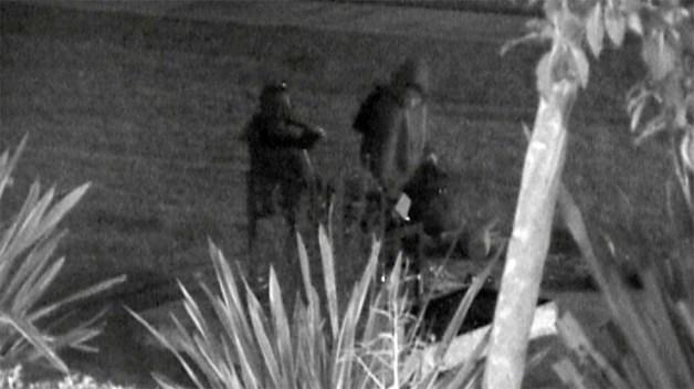 Security Camera Captures 'Comfort Women' Statue Vandal in Glendale Park