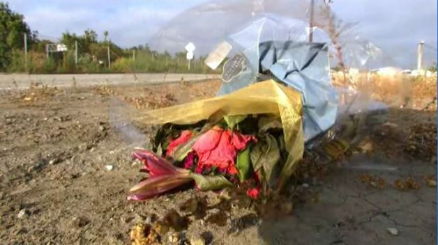 Man Killed, Left Lying in Road in Hit-and-Run