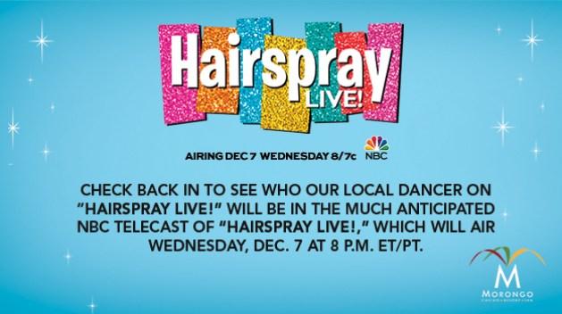 Hairspray LIVE! Casting Call