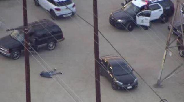 SUV Pursuit Ends at Dog Park