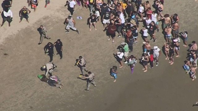 Police Pursuit of Masked Man Ends on Venice Beach