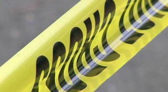 Woman Dies at Burning Man After Falling Under Bus: Sheriff
