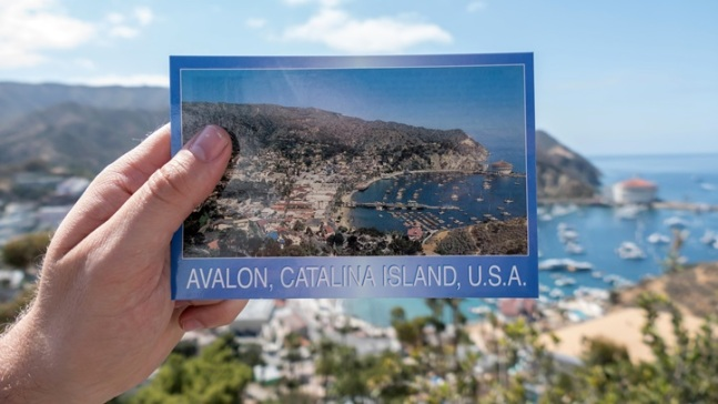Book a 'Best of Winter' Package on Catalina Island