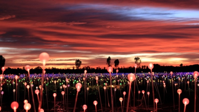 A 'Field of Light' Will Glow in Paso Robles
