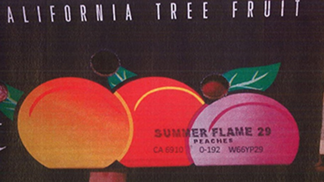 Stone Fruit Recall: Peaches, Nectarines and Plum Varieties Sold at Trader Joe's and Costco Voluntarily Recalled by California-Based Wawona Packing Co.