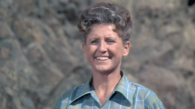 Ann B. Davis: A Very Brady Actress