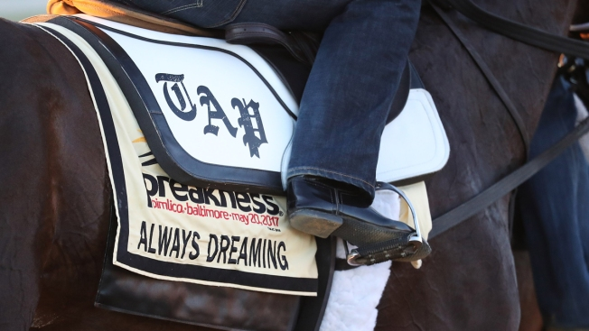 How Does a Racehorse Get Its Name?
