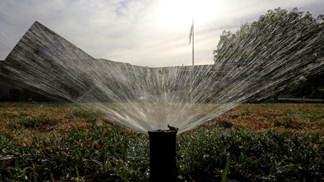 Calif. Not Sure if It's Meeting 20 Percent Water Reduction Goal