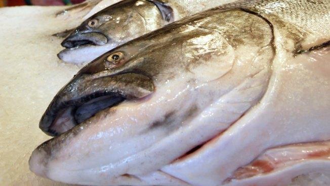 king salmon singles All the alaska king salmon fishing you need kings salmon fishing season, fishing regulations and more.