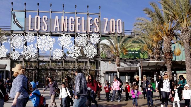 LA Zoo, Museums Will Admit Students Free if Teachers Strike