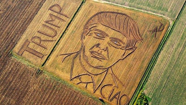 Artist Mows Giant Trump Portrait Into Italian Cornfield