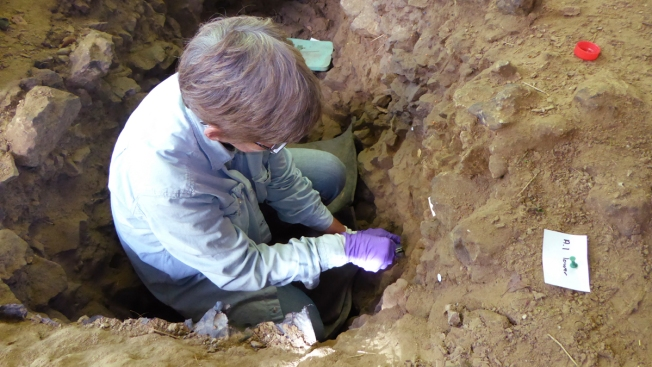 DNA from Dirt: Tracing Ancient Humans Found in 'Empty' Caves