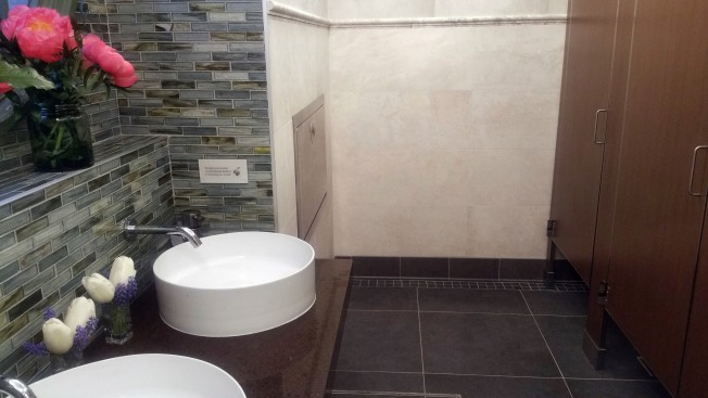 No Dump Here: Posh NYC Public Bathroom Pops Up, With Music, Art