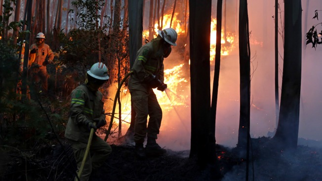 Vast Wildfire Kills 57 in Portugal