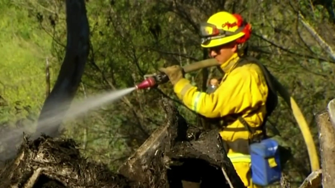 California Faces Above-Average Threat of Wildfire Despite El Nino Storms