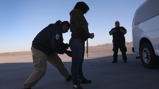 Some Immigrants Avoid Driving, Reporting Crimes During Immigration Crackdown: Report